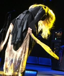 Stevie-Nicks-Gold-Dust-Woman-On-With-The-Show-Tour-Fleetwood-Mac-2015-Photo-Deborah-Wilker